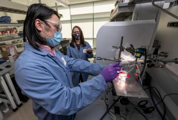 科学家研发由氮化镓制成的人造光合作用装置 随着使用会变得更加高效稳定