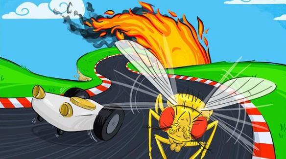 果蝇利用触角感应热量的方式能帮助我们更好研发自动驾驶技术