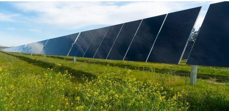 调查表明美国地方政府在2020年创造了新的可再生能源采购纪录