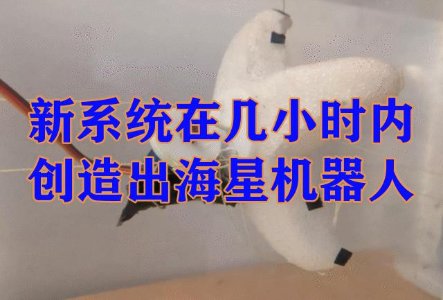 MIT新发明!新系统能够在几个小时内生产出海星机器人