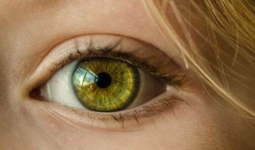 南加州大学发明全球首个视网膜假体 仿生眼有望真正实现眼睛的功能