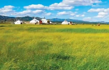 《关于加强草原保护修复的若干意见》出炉:6个热点问题回应来了