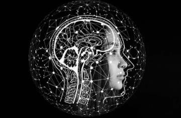 人工智能技术如何塑造未来几年的工作方式