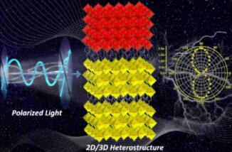 罗军华团队首次将一新型钙钛矿应用于偏振光电探测的研究