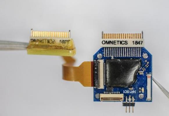 复旦大学自主研发脑机芯片 重量不足3克、成本仅为同类产品的一半