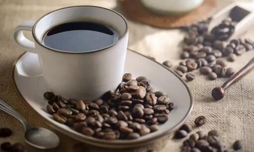 葡萄牙米尼奥大学医学院揭示常喝咖啡可改善大脑网络