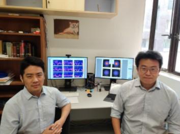 物理学家开发出一种新算法,解决了受约束的量子材料模型中的问题