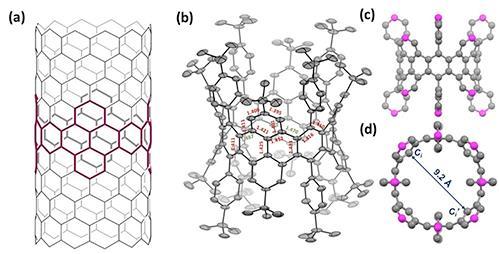 化学家们开发完全共轭锯齿边碳纳米带(CNBs)的原子精确合成策略