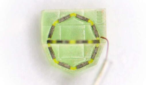 MPI-IS科学家团队开发出微型磁性软体机器人 可像乐高一样任意组装