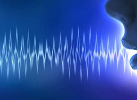 Sensory发布专注于隐私保护的的语音生物识别助手