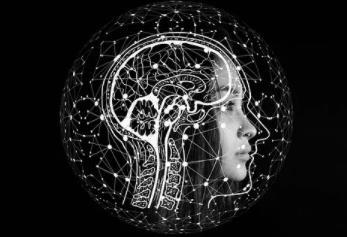 人工智能和大数据领域最具争议的五大事件
