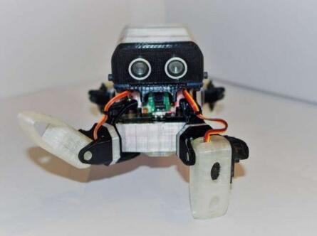 受蜘蛛启发的新型四足机器人,可用于训练和评估强化学习