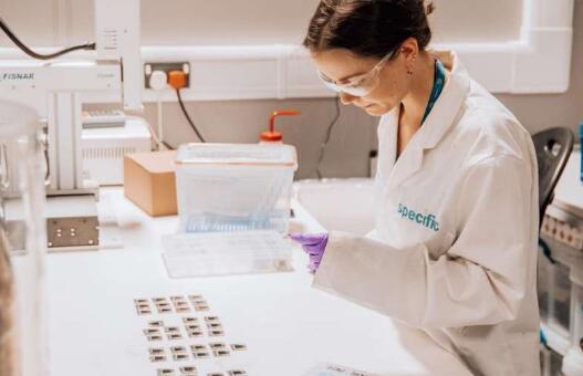 斯旺西大学成功研发能替代太阳能电池制造中有毒溶剂的产品