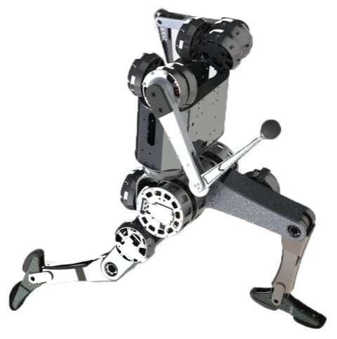 一个可以表演杂技动作的动态机器人