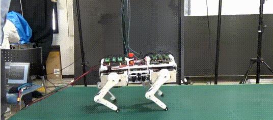 机器狗居然可以走出猫步,简直是惊呆了