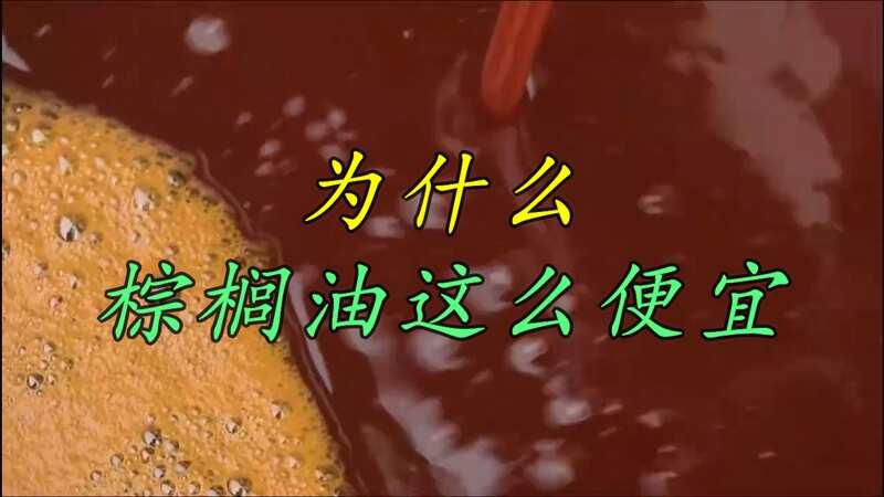 同样是植物油,棕榈油成交价比同时期大豆油价格要低近3000元是为何?