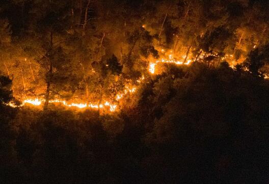 物联网无人机,可以检测到大小仅为一平方英里的火灾