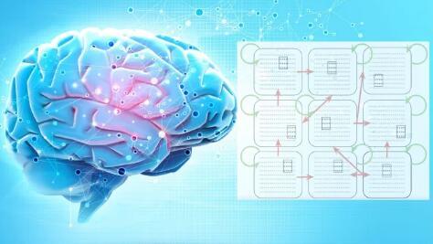 根据数学模型构建大脑的工作原理,为人工智能研究提供了新方向