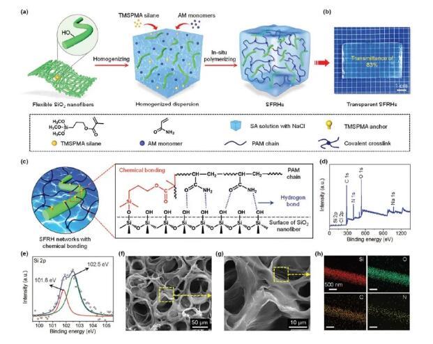具有机械和电子稳定性的纳米纤维水凝胶:透明、高弹、可拉伸