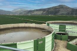 不同类型奶牛场的生物质能工厂均可实现自动化