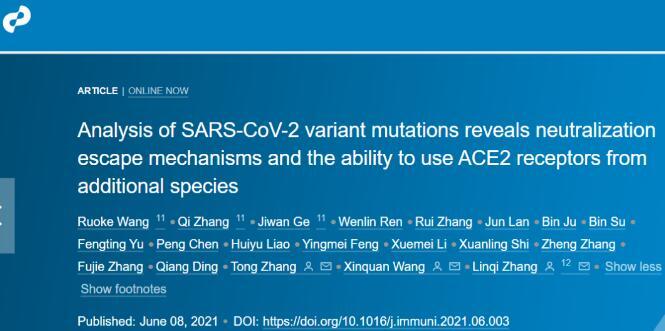 清华大学等系统分析多种新冠病毒变异体,当前的抗体疗法和疫苗迎来挑战