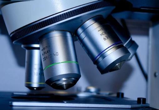 机器学习将显微镜数据处理时间从几个月缩短到几秒钟