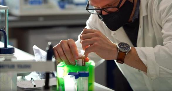 受蜘蛛絲啟發,研究人員開發基于植物的、可持續的、可擴展的塑料材料