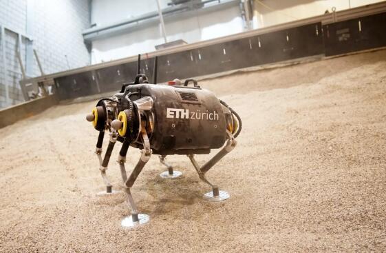 新型小型四足机器人,可以模仿羚羊在沙漠奔跑