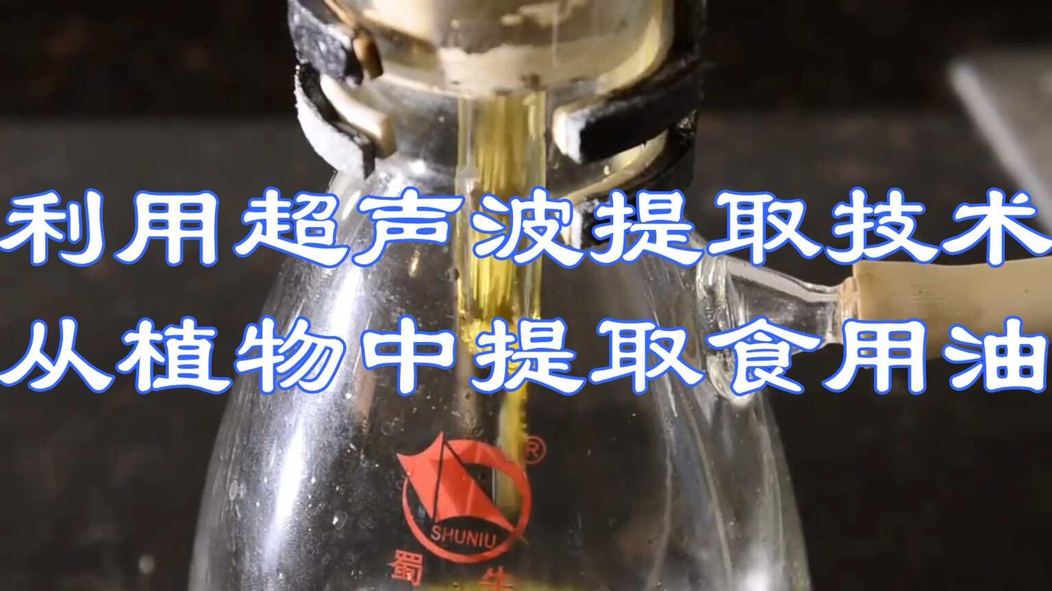 利用超声波提取技术,能从植物中提取食用油