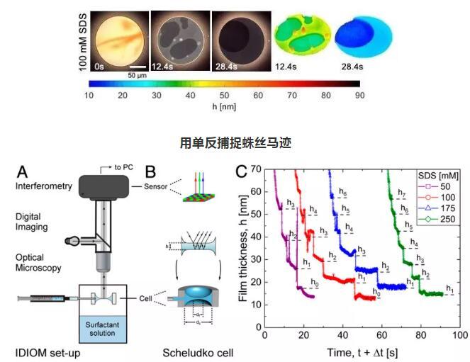 """一杯""""奶茶"""",一台单反相机和反射光显微镜,科学家弄清了泡沫消失之谜"""