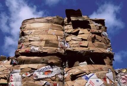 廢紙要成香餑餑了:回收價格大漲20% 供應缺口超百萬噸