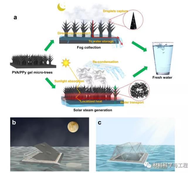 新型水凝膠膜成全天候淡水收割機,從霧里收集淡水