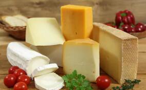 兒童奶酪市場激戰正酣,行業競爭已經升級