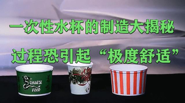 """一次性水杯的制造大揭秘!过程恐引起""""极度舒适"""""""