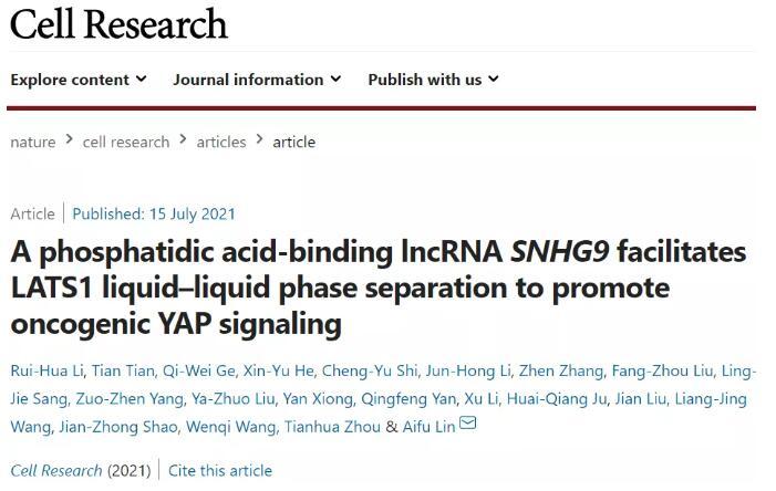 浙江大學揭示信號激酶在信號轉導和癌癥發展中的新調節作用