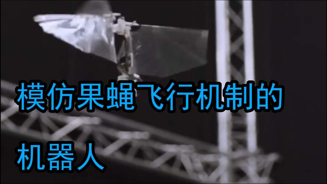 果蝇仿生新成果,能在空中悬停的飞行器