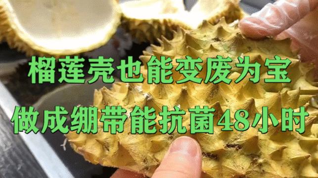 榴蓮殼也能變廢為寶,做成繃帶能抗菌48小時
