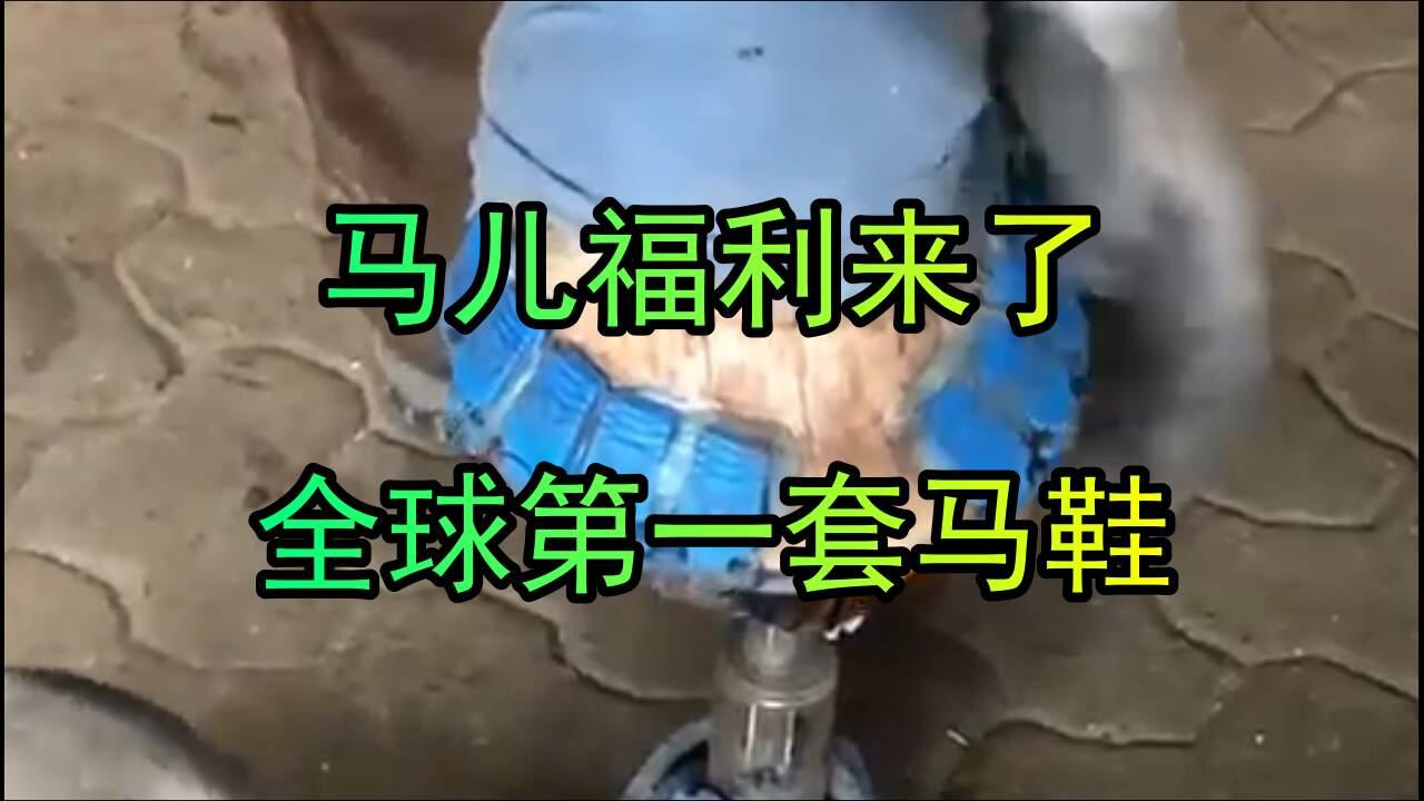 全球第一套夾馬式馬鞋,馬不用再被釘掌了
