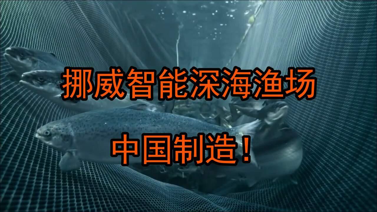 """價值4.2億的中國造智能深海漁場,實現""""挪威三文魚自由"""""""