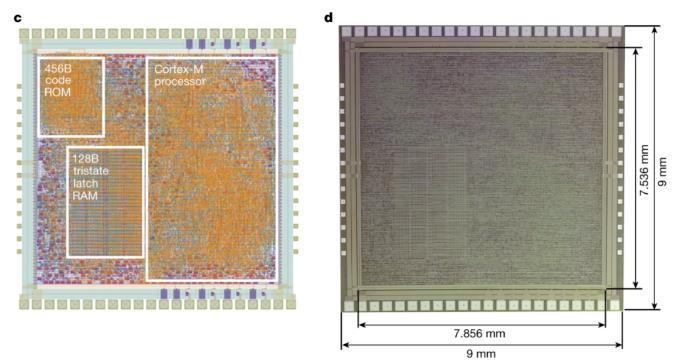 Arm:發布塑料芯片,終于能擺脫硅元素材料的限制了