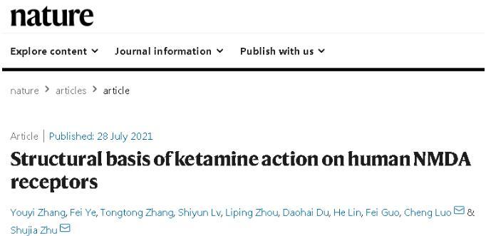 抗抑郁藥氯 胺酮的三維結構和分子機制被揭示,發文在Nature上