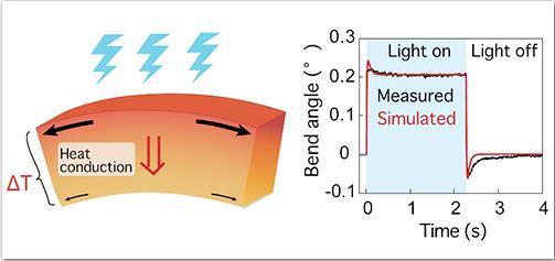 與光共舞:研究人員開發通過發光使水晶彎曲的新方法