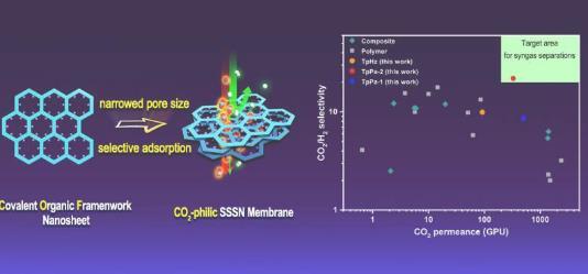 單相共價有機骨架膜使 CO2 選擇性分離成為可能