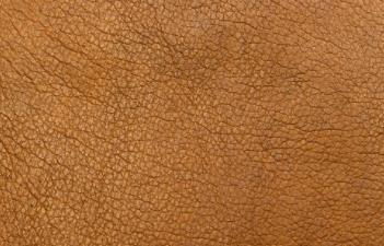 ?皮革霉斑怎么去除?皮革修復、護理小技巧大匯總