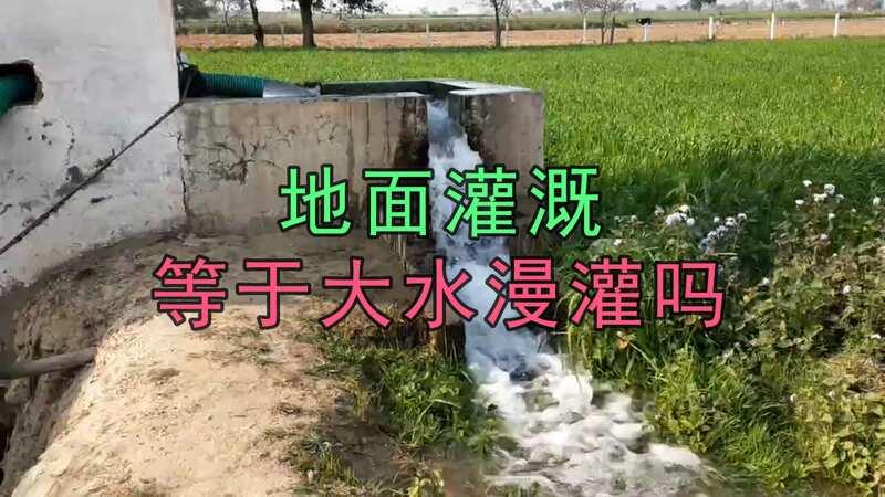 地面灌溉是不是就浪费水了,看了这个你就知道想的不对了