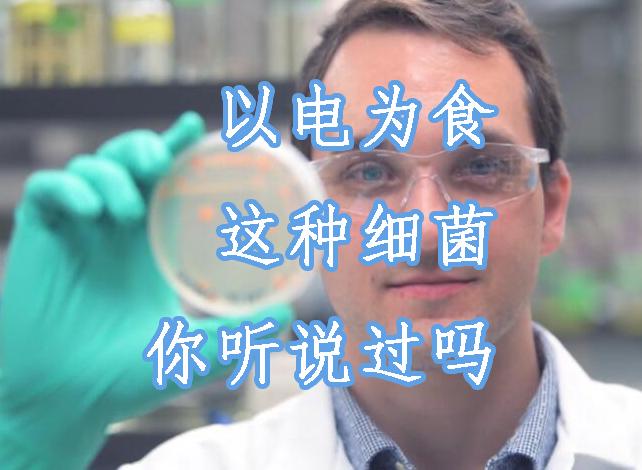 不只坏菌还有好菌,有的细菌吃垃圾,有的还以电为食!