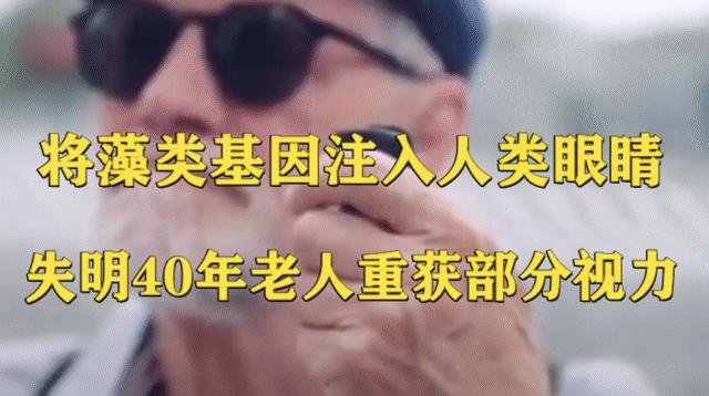 将藻类基因注入人类眼睛,失明40年老人重获部分视力?