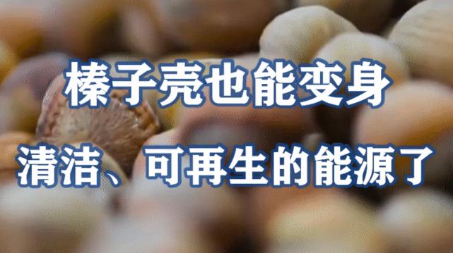 榛子壳也能变身清洁、可再生的能源了