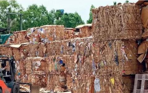 万吨废纸出口无门,内地禁止洋垃圾,香港慌什么呢?