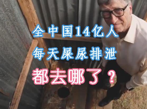 全国每天的屎尿排泄量够拉十几万车,你知道自己的臭臭都去哪了吗?
